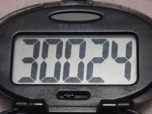121222-251万歩計(S)