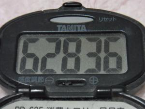 121223-411万歩計(S)