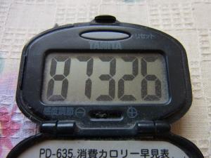 121231-106万歩計(S)