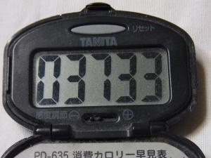 130101-250万歩計(S)