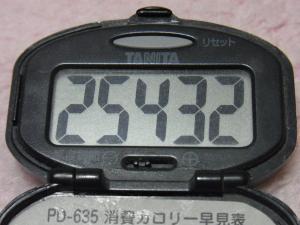 130102-108万歩計(S)