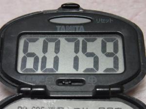130103-251万歩計(S)