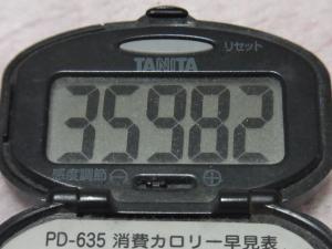 130105-261万歩計(S)