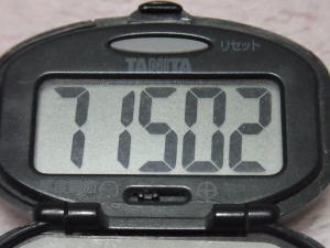 130106-251万歩計(S)