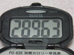 130202-260万歩計(S)