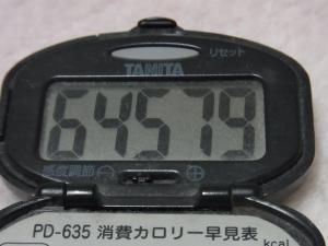 130210-241万歩計(S)