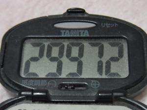 130216-261万歩計(S)