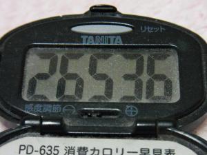 130223-261万歩計(S)