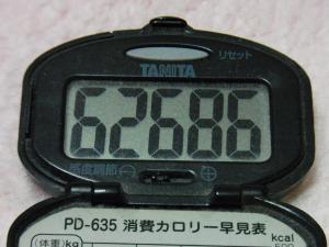 130224-221万歩計(S)