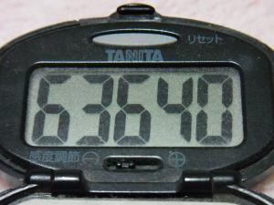 130310-241万歩計(S)