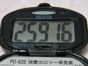 130316-261万歩計(S)