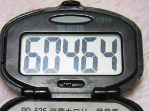130331-611万歩計(S)