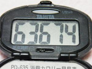 130407-261万歩計(S)