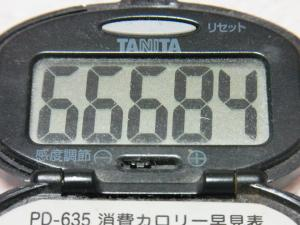 130414-251万歩計(S)