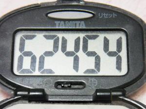 130421-251万歩計(S)
