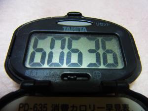130428-251歩数計(S)
