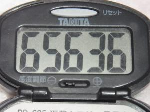 130504-241万歩計(S)
