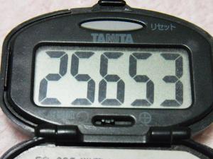 130511-261万歩計(S)