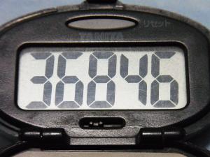 130518-261万歩計(S)