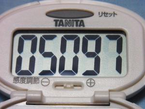 130519-292新しい歩数計(S)