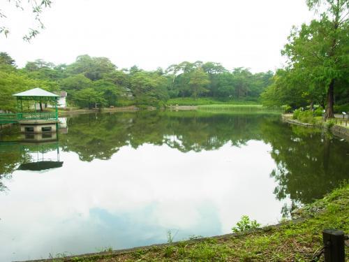 130615-201大宮公園(S)