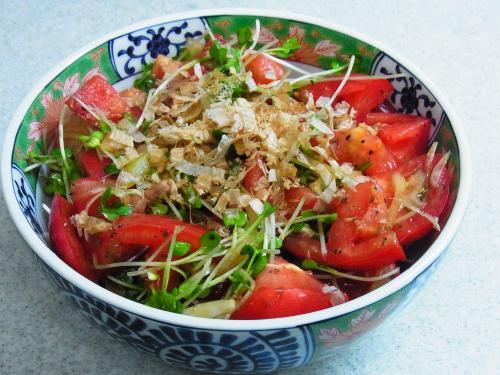 130622-231トマトと玉ねぎとかいわれのサラダ(S)