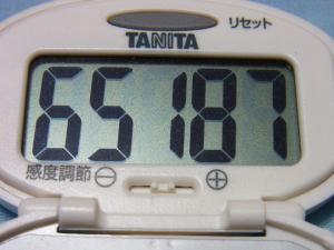 130623-261歩数計(S)