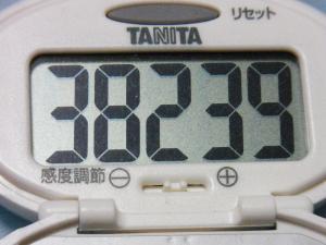 130629-251歩数計(S)