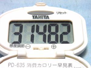 130713-261歩数計(S)