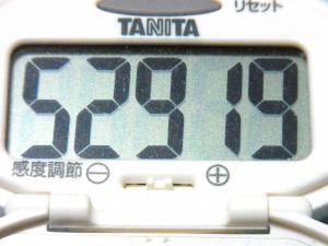 130714-231歩数計(S)