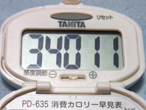 130720-261歩数計(S)
