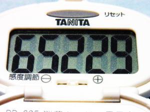 130721-251歩数計(S)
