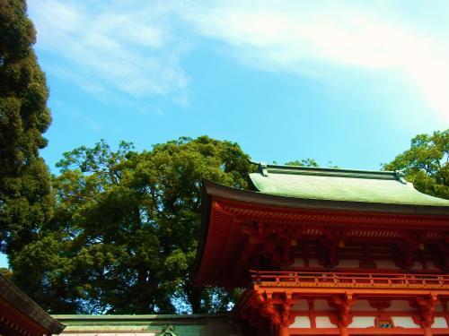 130728-201氷川神社(S)