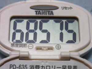 130728-251歩数計(S)