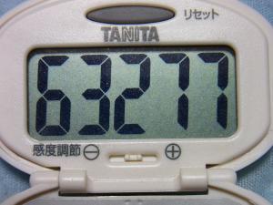 130804-251万歩計(S)
