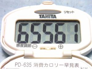 130811-251歩数計(S)