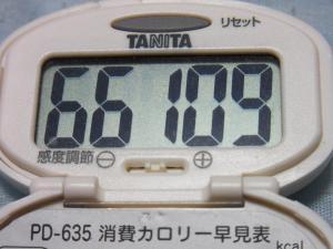 130818-251万歩計(S)