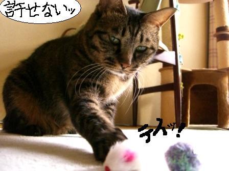 妄想劇場9