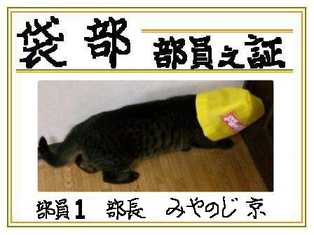 京の部員証