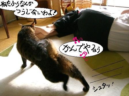 パパ、マジ寝2