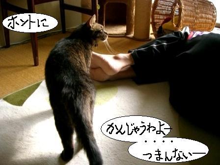 パパ、マジ寝3