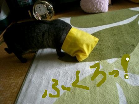 レッツ袋2