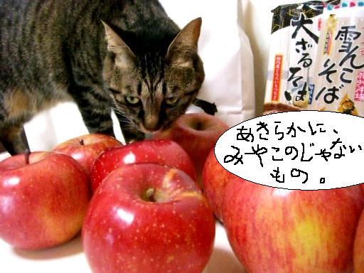 りんご便4