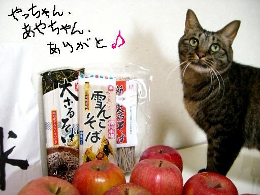 りんご便9