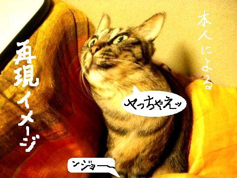 おちぃ部長4