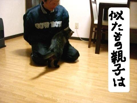 年末ぱやぱや12