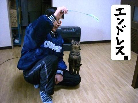 年末ぱやぱや13