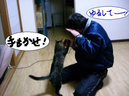 伝わらない5