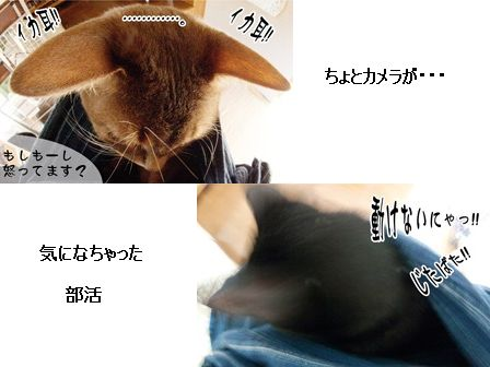 キキちゃん&ののちゃん