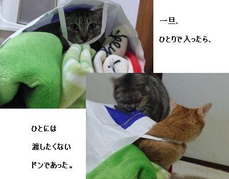 黒柳姉妹&ドン3